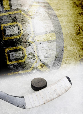 Bruins Game Limos and Party Bus Rentals